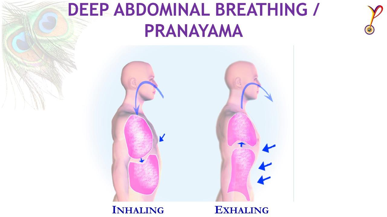 Deep Abdominal Pranayam - YPV Breathing Techniques - Yoga Prana Vidya